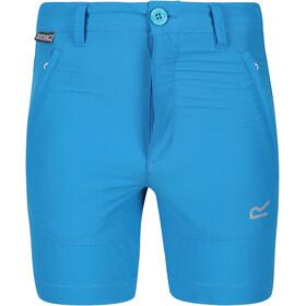 Regatta Highton Shorts Kids, niebieski